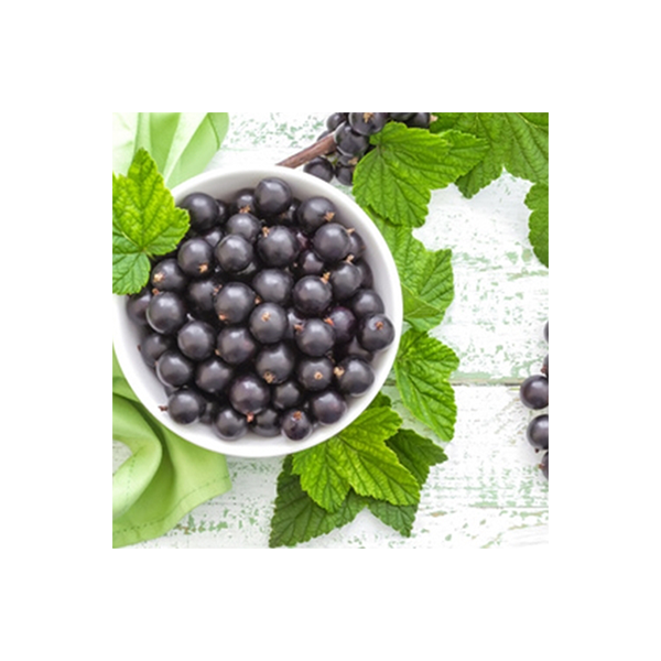 Perfumers Apprentice (TPA/TFA) Black Currant Flavor/Cassis Aroma
